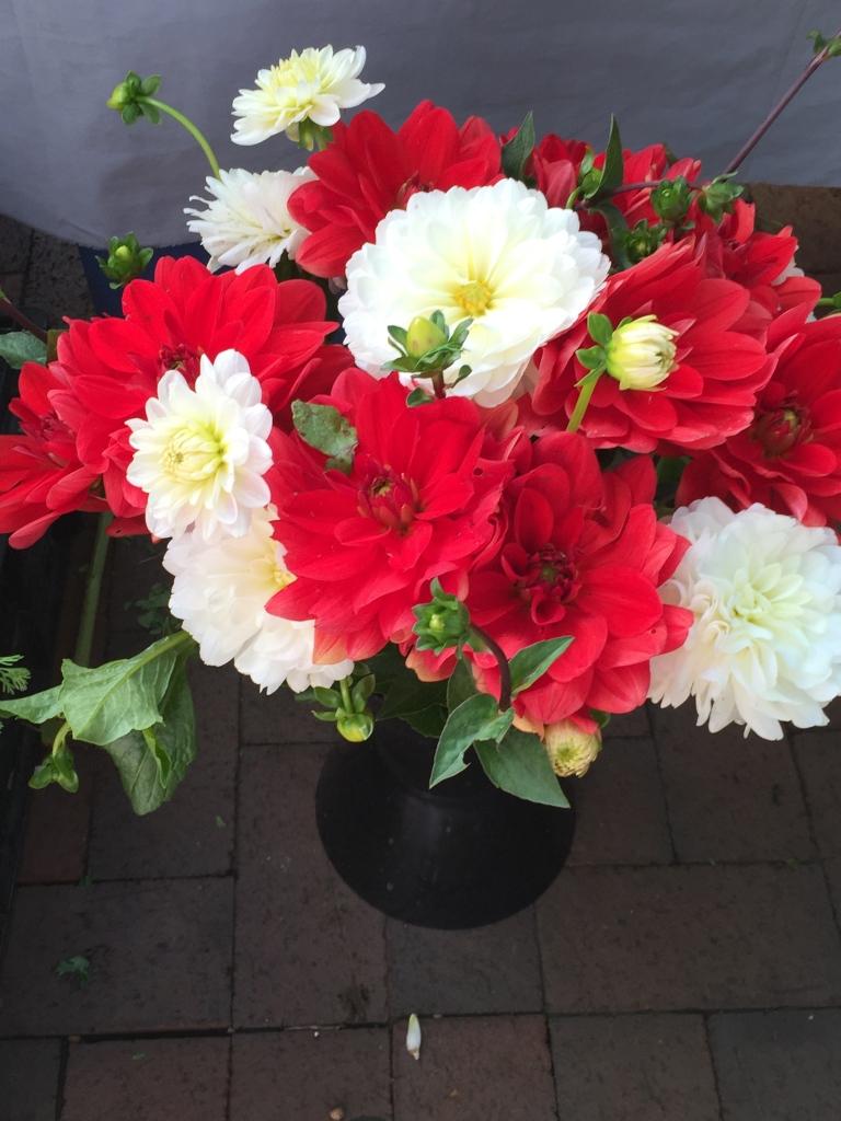 stunning bouquet at farmers market
