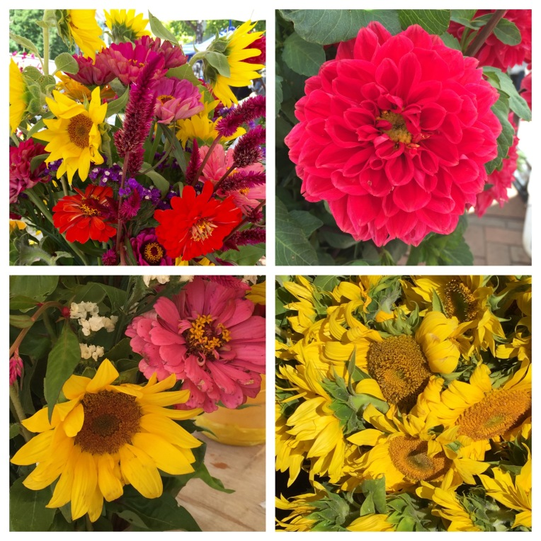 late August flowers at farmers market