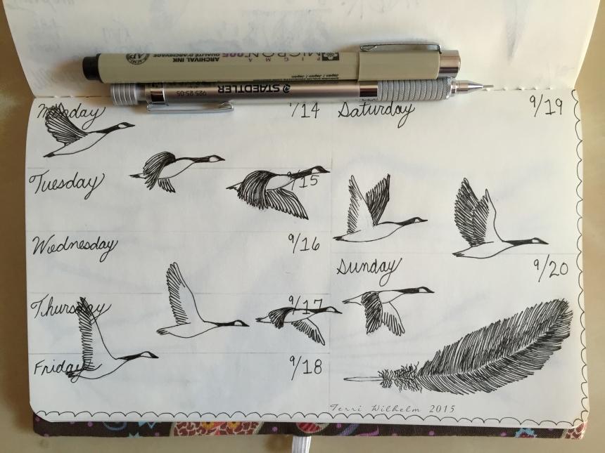 sketchbook journal for one week