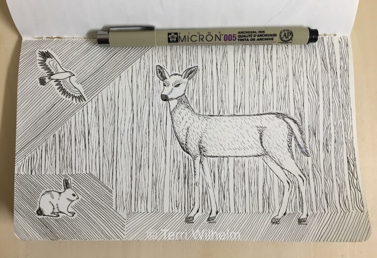 sketchbook page: doe woods