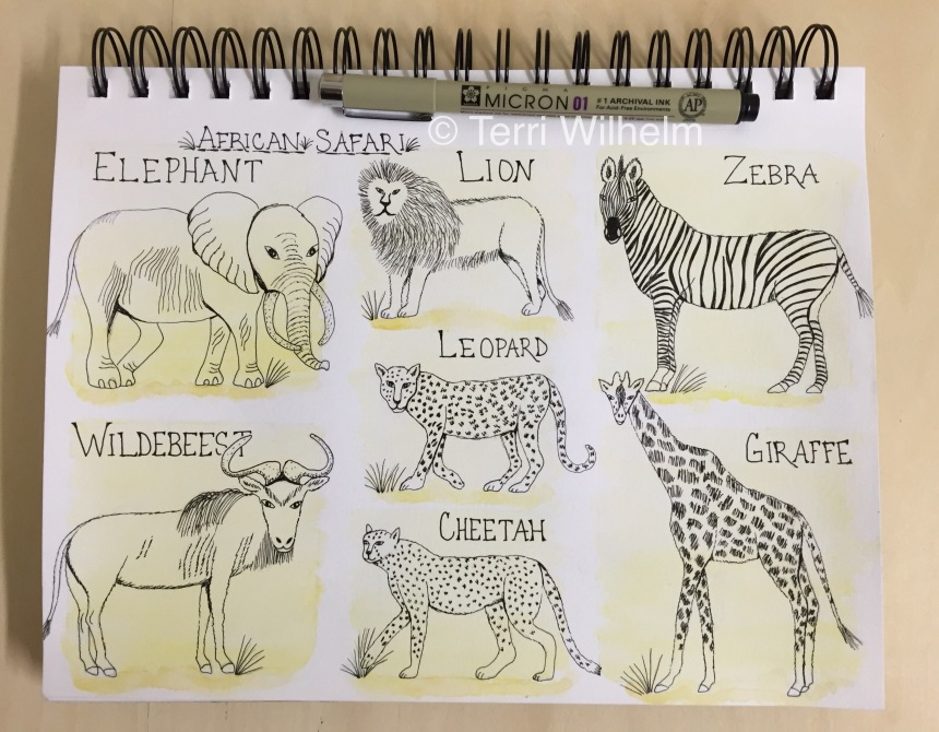 sketchbook page week 3 african safari