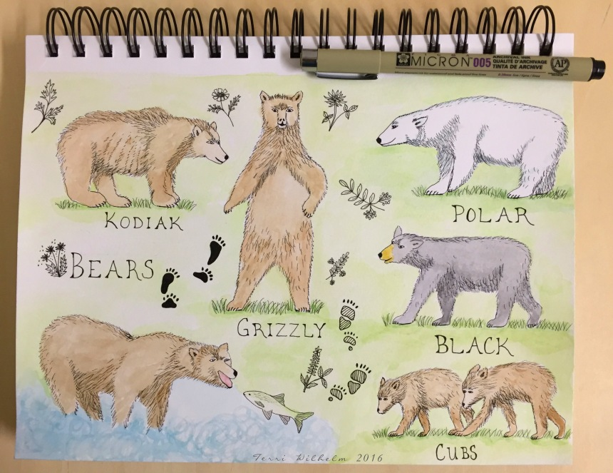 Week 6 sketchbook page of bears