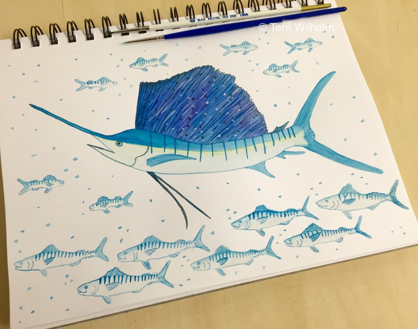 week 16 sketchbook page sailfish and mackerel
