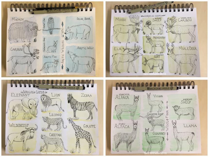 animal art weeks 1-4