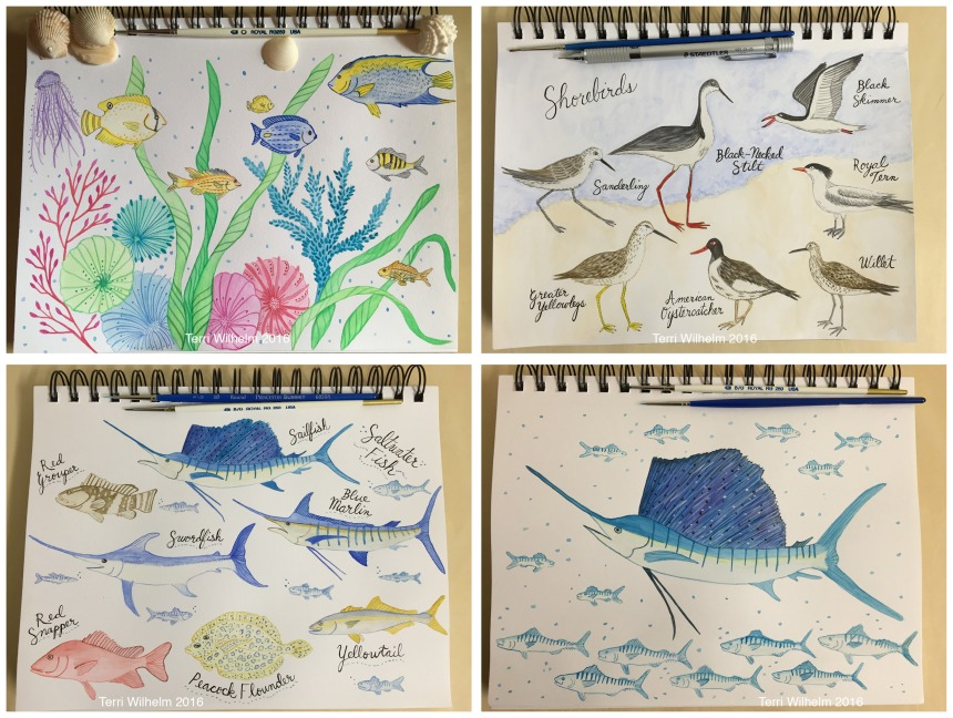 animal art weeks 13-16