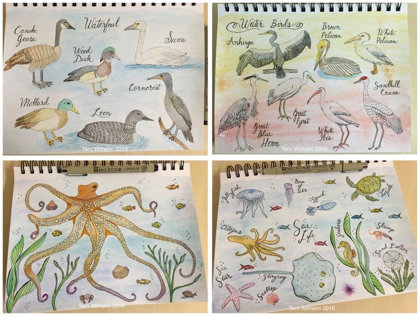 animal art weeks 9-12