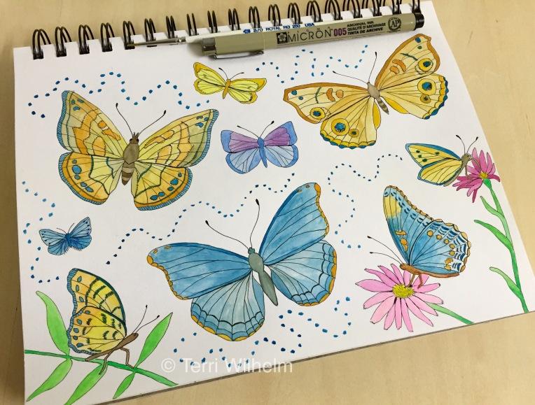 week 23 animal art butterflies