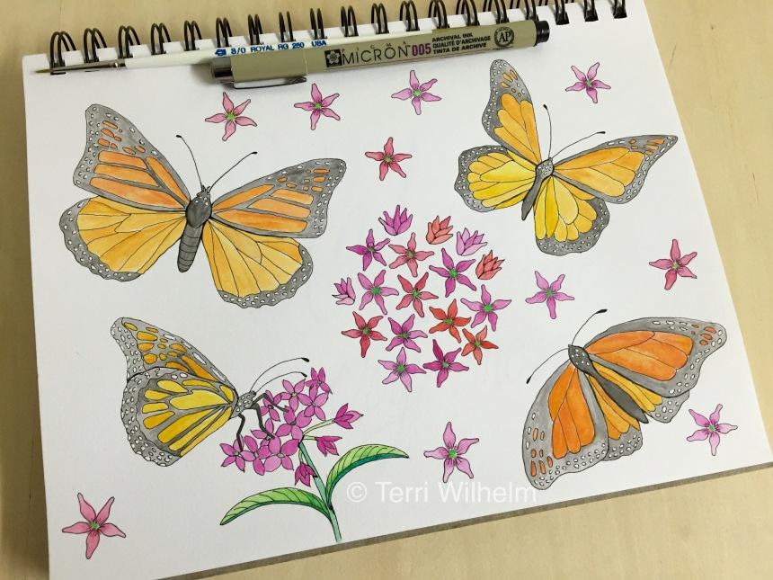 week 22 animal art monarch butterflies