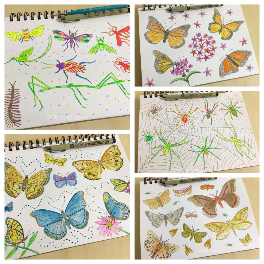 June animal art series