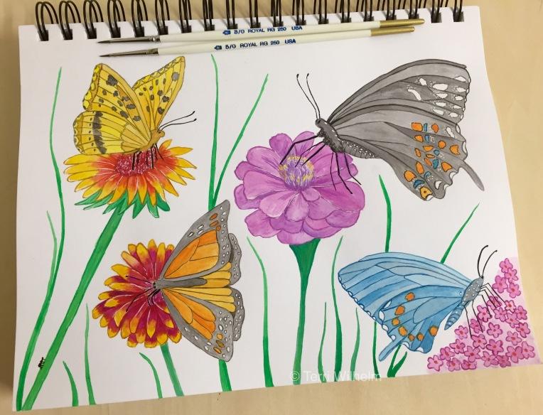 week 27 wildflowers and pollinators