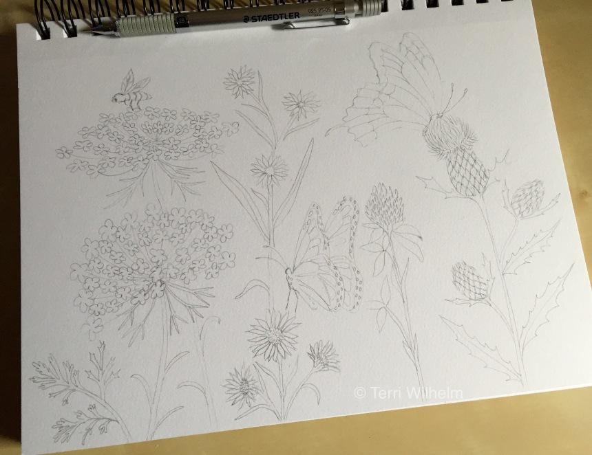 week 28 drawing in progress