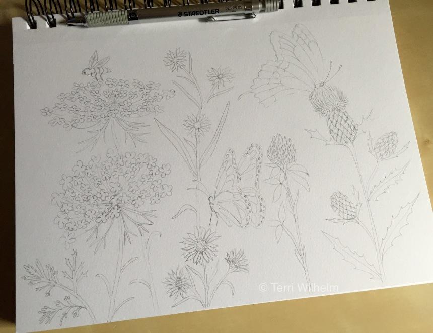 week 28 drawing in progress