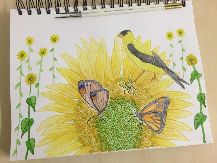 animal art sketchbook sunflowers and pollinators