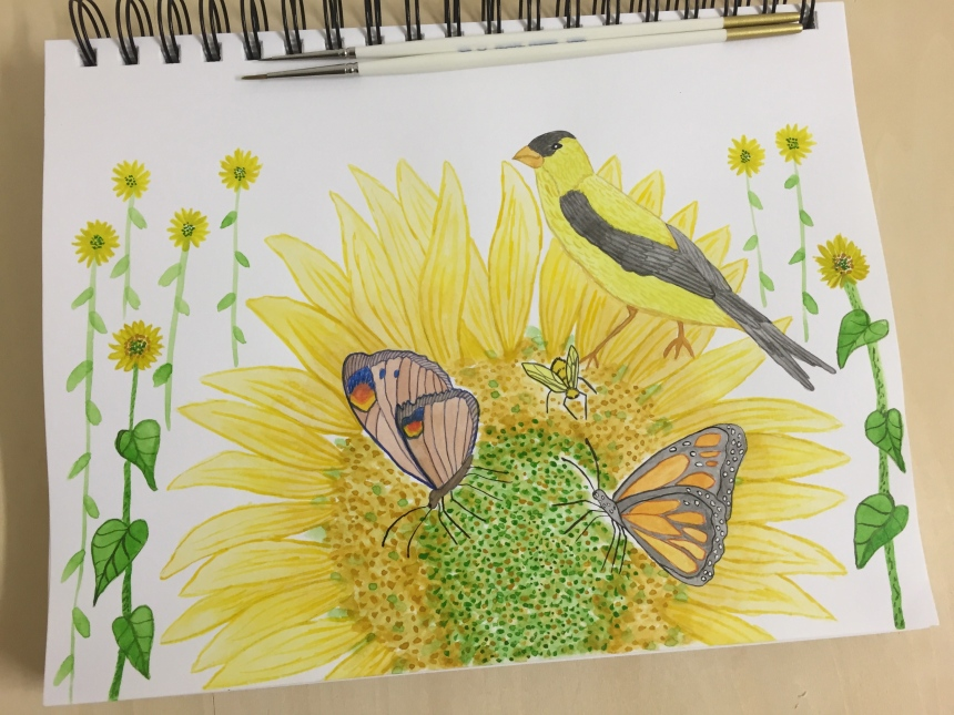 animal art sketchbook sunflowers and pollinators
