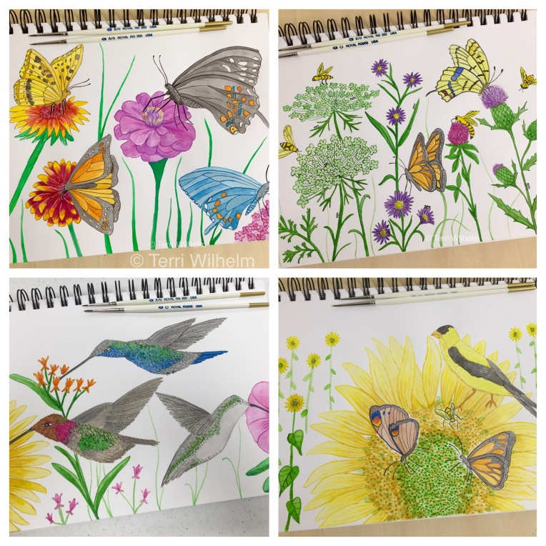 animal art sketchbook wildflowers and pollinators