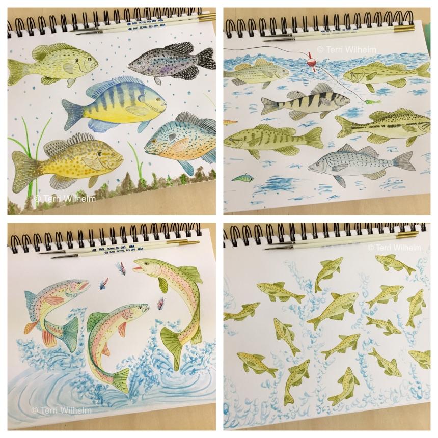 August animal art freshwater fish