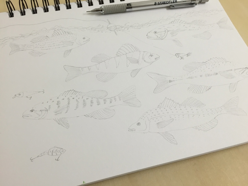 week 32 animal art fish sketches