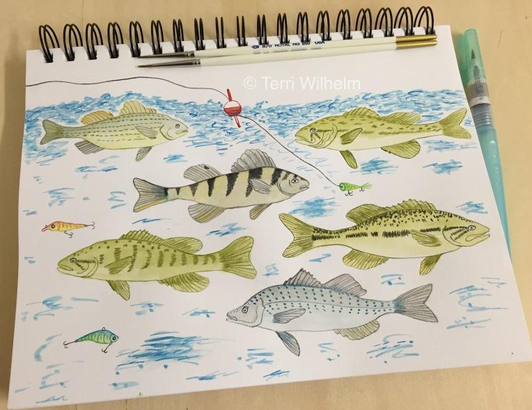 week 32 animal art fish