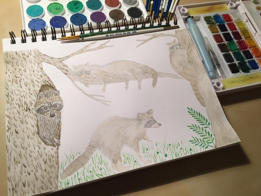 week 35 raccoon painting
