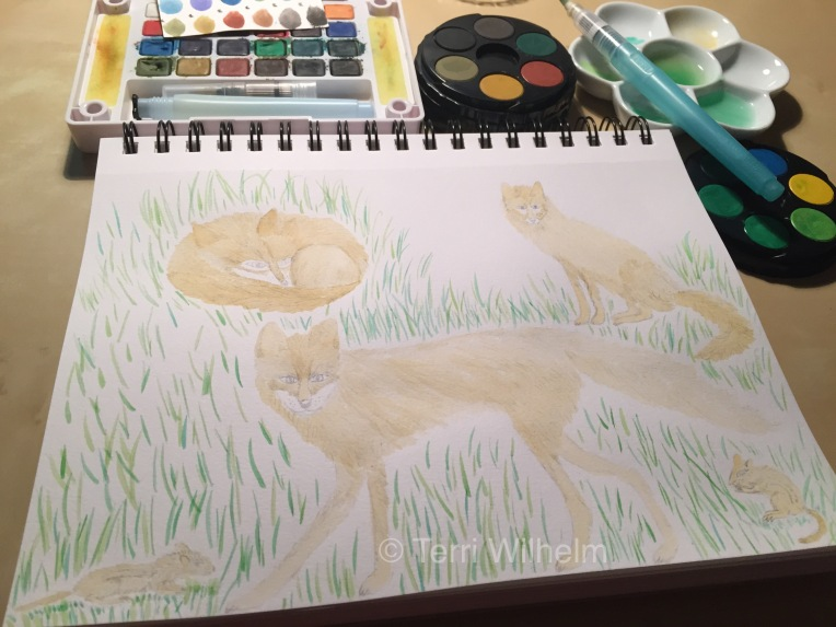 week 37 animal art fox painting