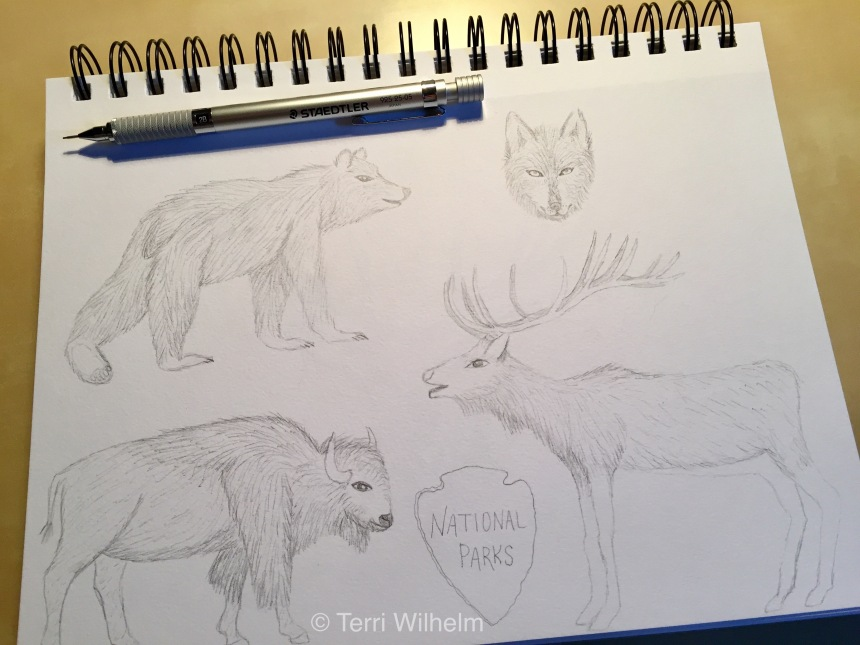 pencil sketch national parks wildlife